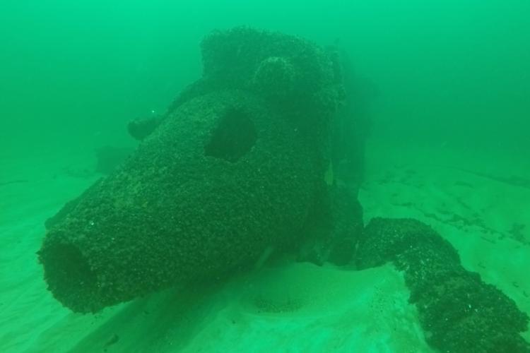 Dykning Bornholm Kranen Baltic Sea Guide