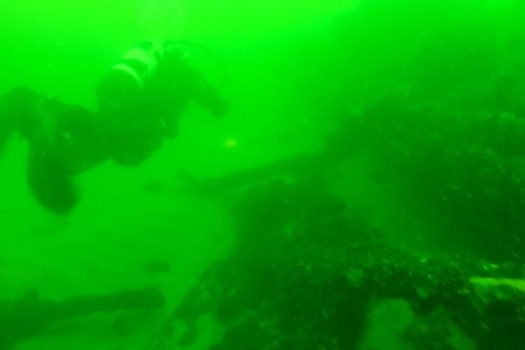 Vragdyk på Skraentevraget ved Bornholm
