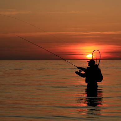 Kystfiskeri ved Bornholm.
